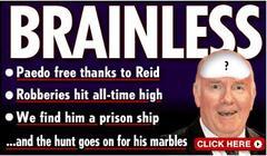 Brainless_reid_1